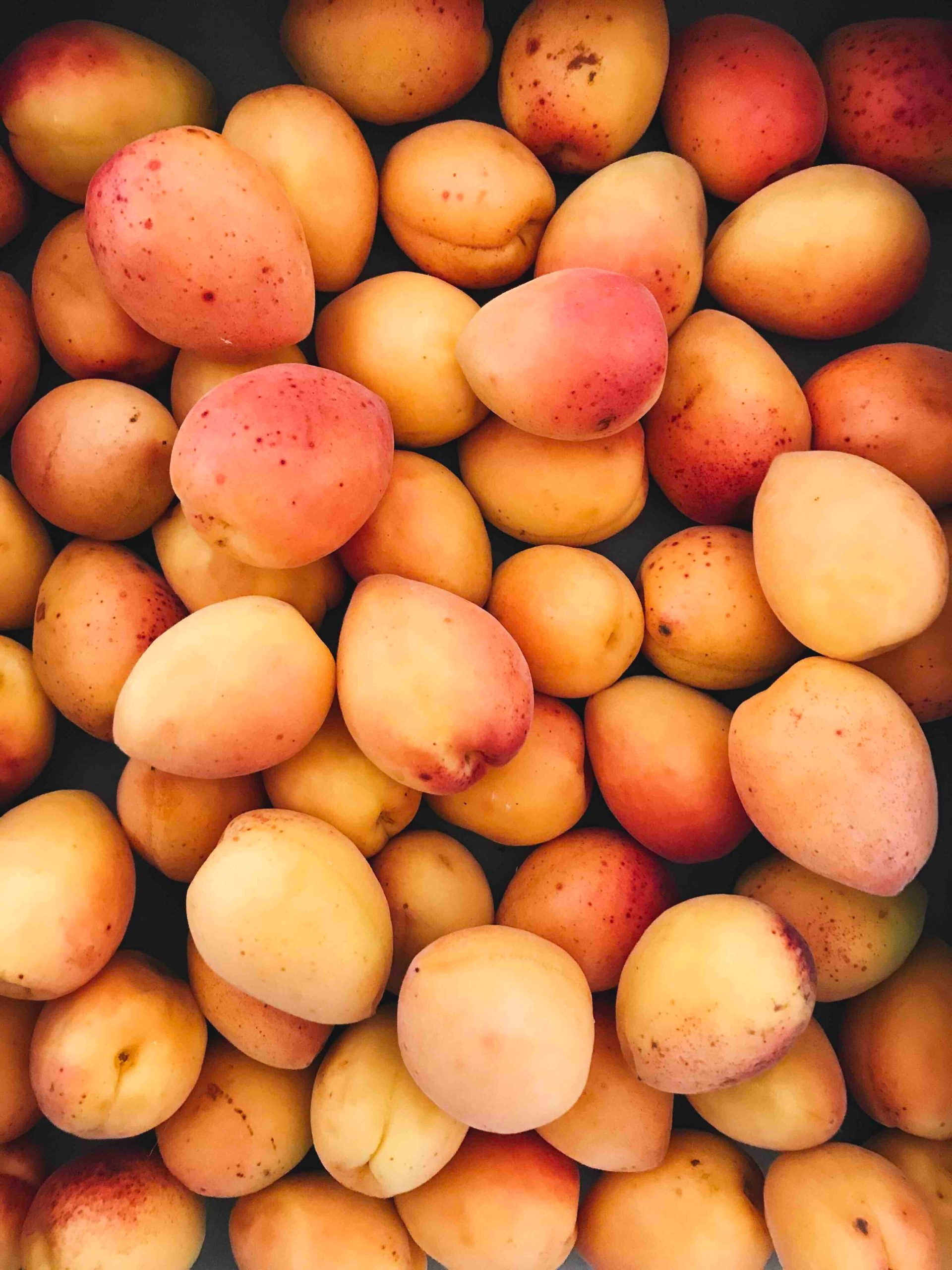 Reasons To Eat Mango For Health Benefits