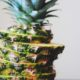 Pineapple Health Benefits: Facts How It Is Useful